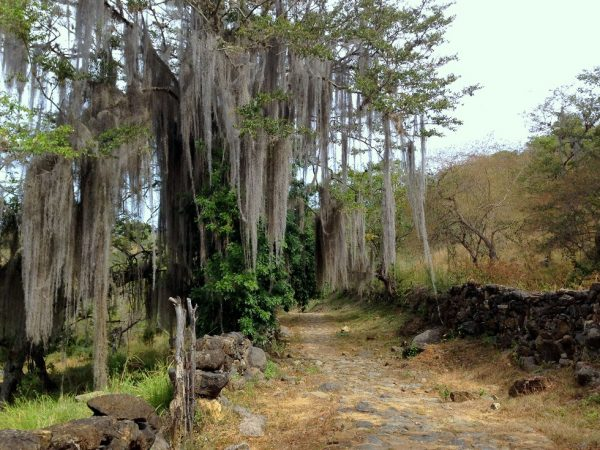 Barichara to Guane, Colombian Highlands Tours (12)