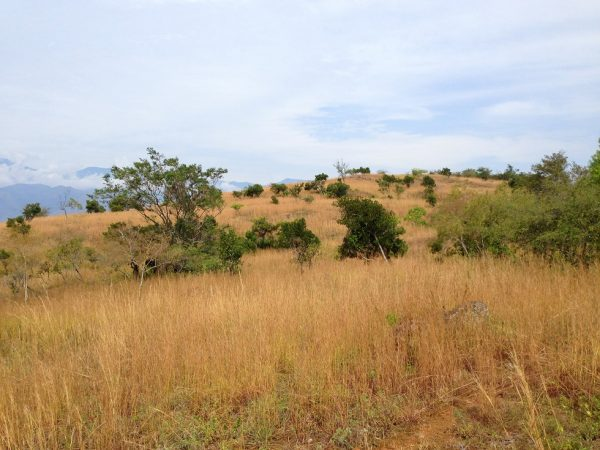 Barichara to Guane, Colombian Highlands Tours (13)