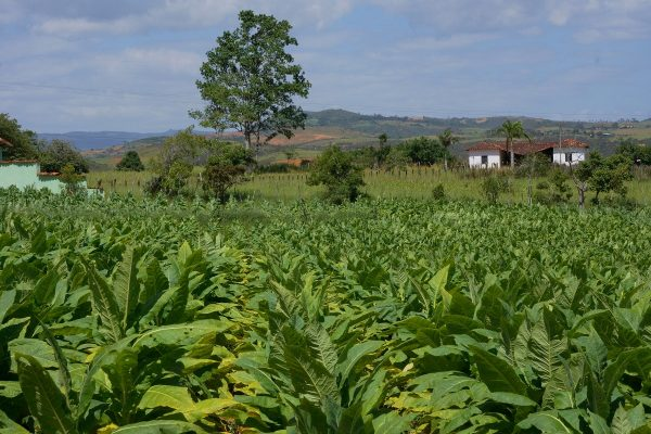 Barichara to Guane, Colombian Highlands Tours (4)