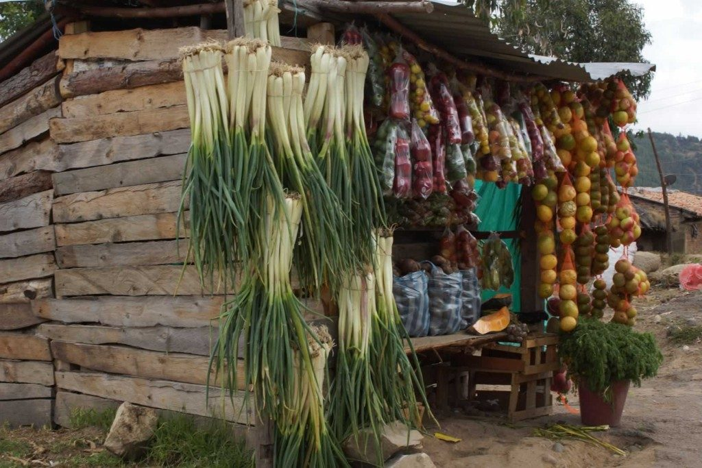 Market on the Road to Aquitania, Tota Lake. Cultural-and-History-with-Colombian-Highlands-67-1024×683