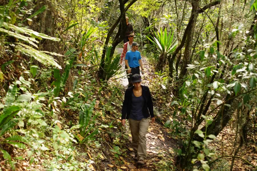 Trails in Arca Verde, Gachantiva. Mountain-Trips-with-Colombian-Highlands
