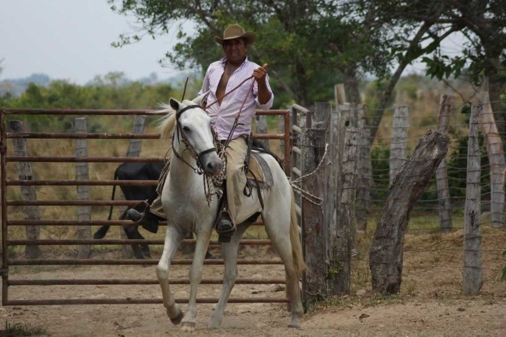 Cowboy Paz de Ariporo, Casanare. Plains-of-Colombia-with-Colombian-Highlands-34-1024×683