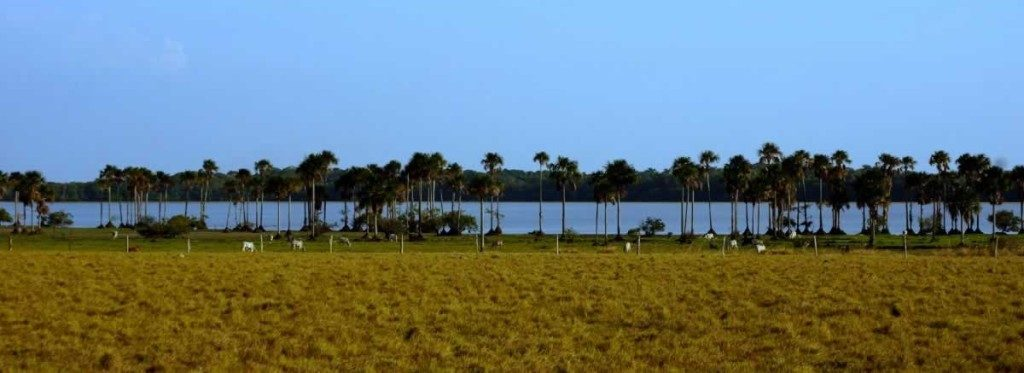 El Lagunazo, Casanare. Plains-of-Colombia-with-Colombian-Highlands-55-1024×373
