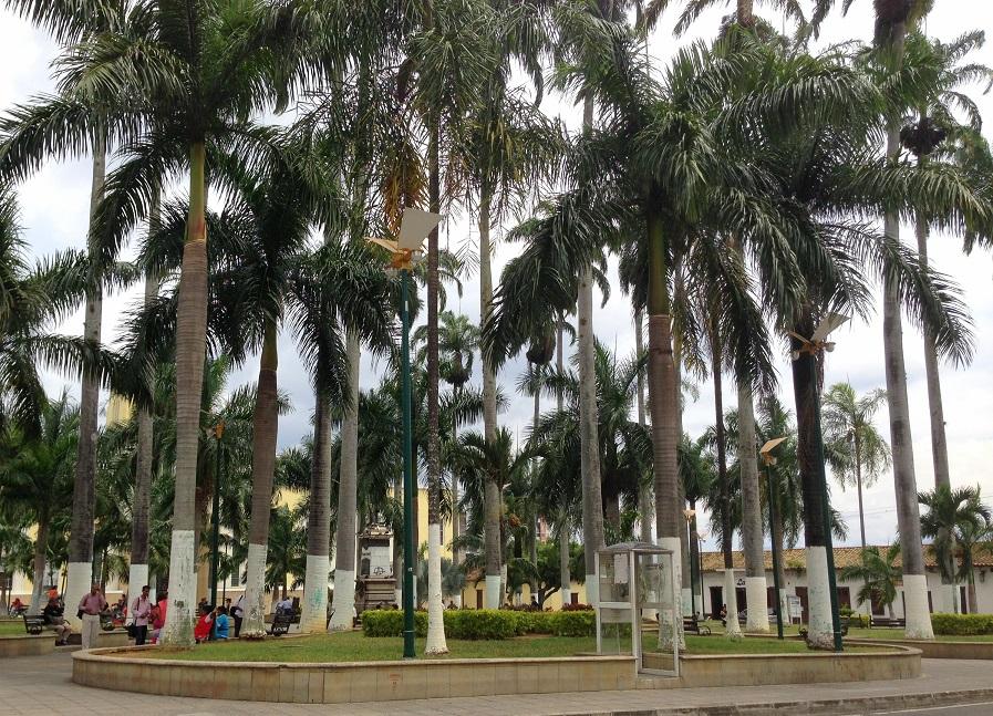 Bucaramanga City Center. Tour Colombia (4)