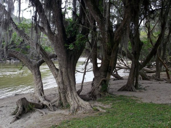 San Gil – Gallineral Park – Colombian Highlands – Tours Colombia (12)