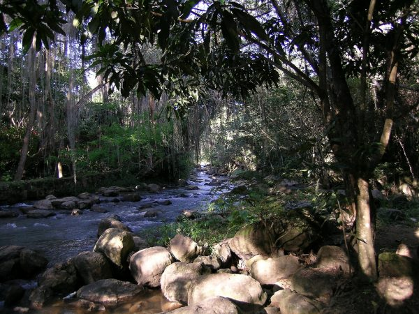 San Gil – Gallineral Park – Colombian Highlands – Tours Colombia (4)